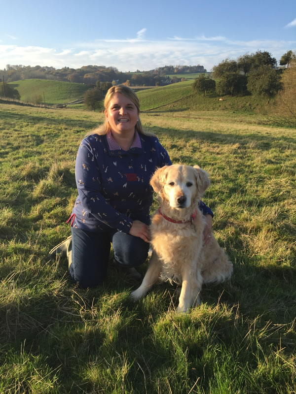 Dog Walking , Dog Home boarding , Doggie Daycare,Pet Companion, Home visits, Chicken and Small Animal Boarding and Pet Taxi in Worcestershire